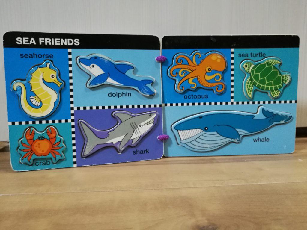 海の動物パズル