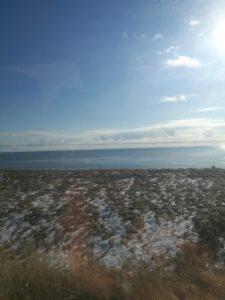 スーパーおおぞらからの海の景色