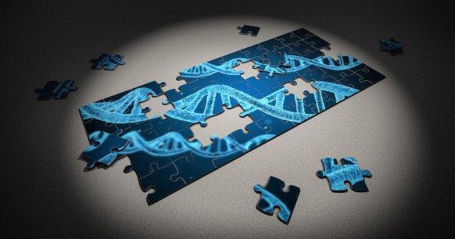 DNAを表したパズル