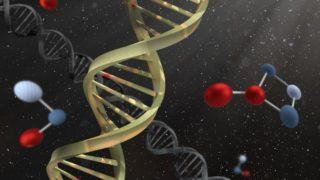 遺伝子画像
