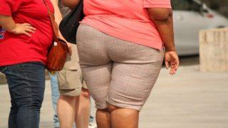 肥満体型の後ろ姿